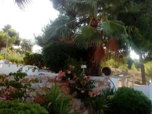 Pyrgos_ tou_ Savva-Studios_to_let (23)